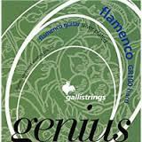 """GR100""""Genius Flamenco""""Hard tension"""